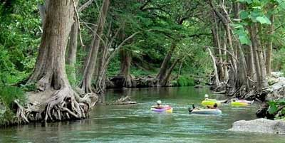 Amazing Where The Guadalupe Is The Party River, The Frio Is The Unadulterated Gem  Of Texas.